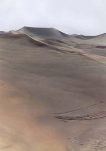 Namib desert near Sossusvlei