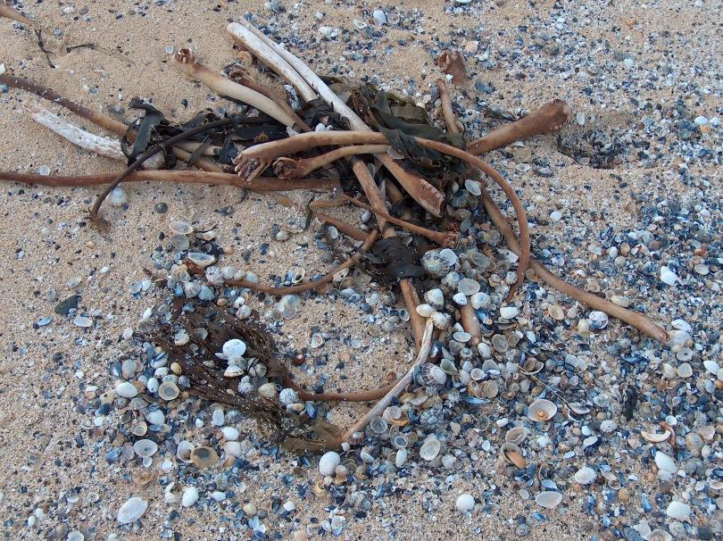 """Design"" on the beach, Isle of Harris"